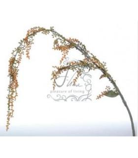 Branche de saule