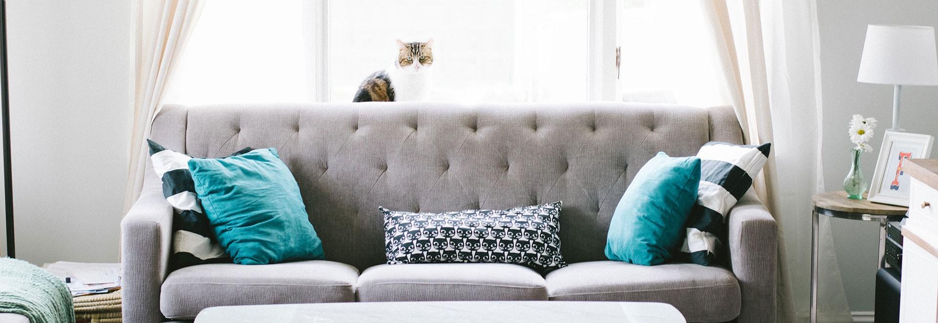 BelDeko vous propose une large gamme de meubles exotiques, meubles coloniaux, meubles contemporains. Nous importons pour vous des meubles en Palissandre, Hévéa ...